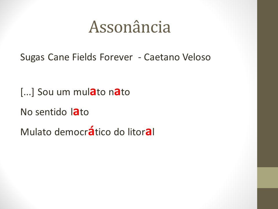 Assonância Sugas Cane Fields Forever - Caetano Veloso [...] Sou um mulato nato No sentido lato Mulato democrático do litoral